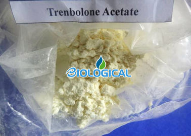 Trenbolone Acetate Trenbolone Powder Tren Acetate 10161-34-9 For Big Muscle Growing